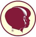 Vasárnapi Iskolai Szövetség (VISZ)